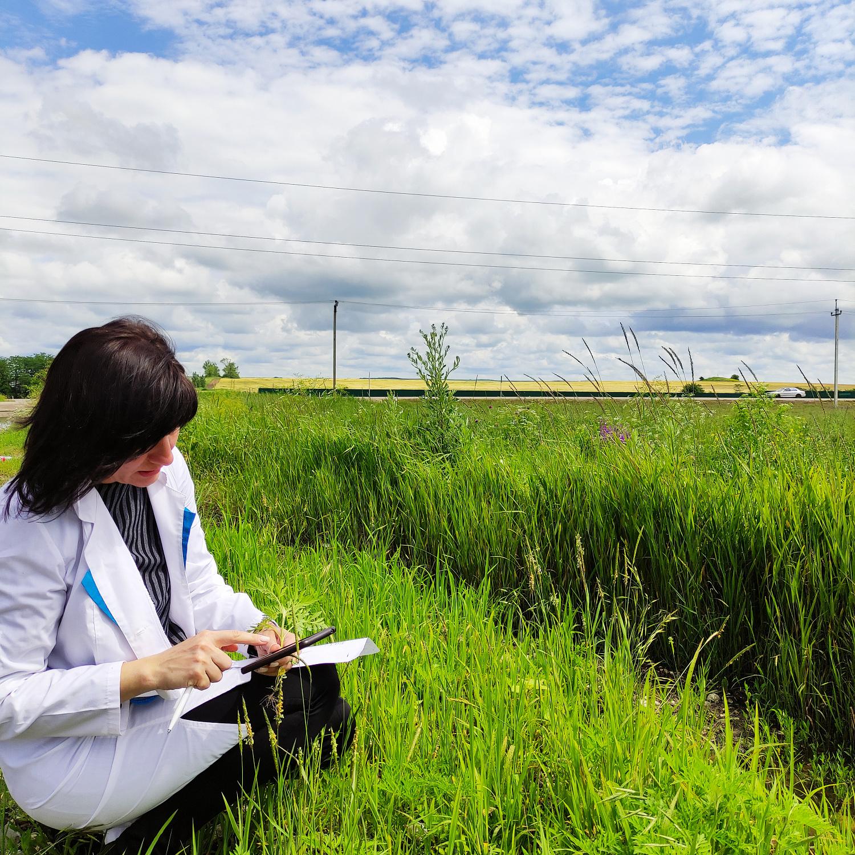 Ставропольский Россельхозцентр проводит фитосанитарный мониторинг